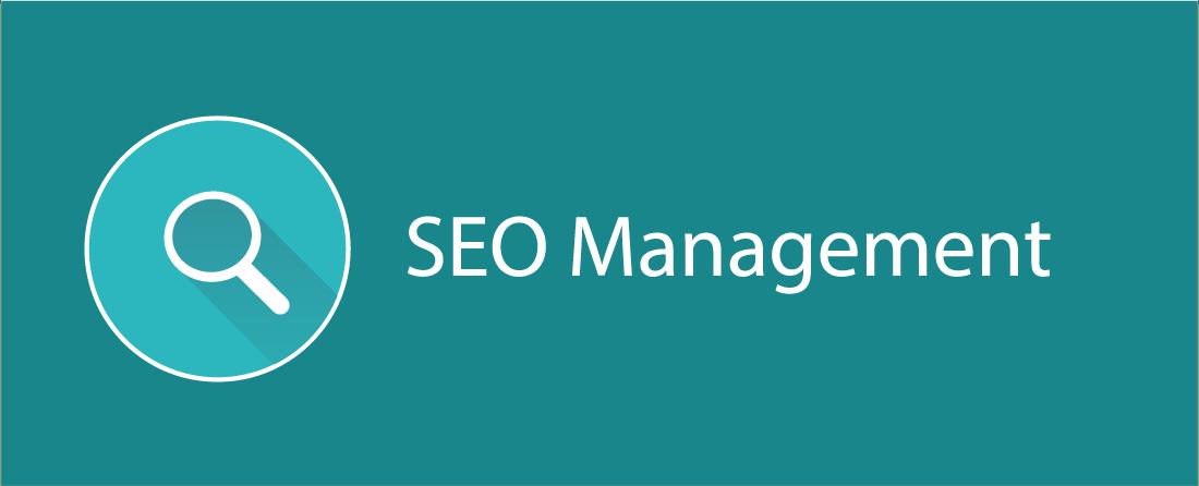 SEO Management