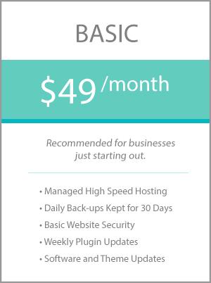 Basic Managed Website Hosting Plan